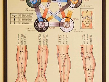 rochester_acupuncture_treatment_room_2_five_element_chart